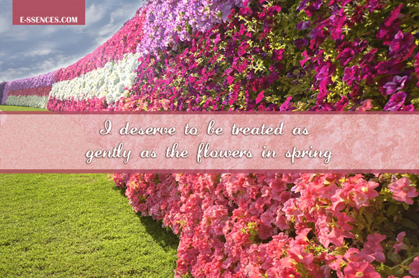 quotes_gentle-as-flowers_sm